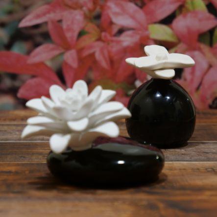 Flor de Mikado